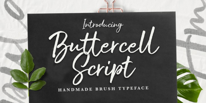 Шрифт Buttercell Script