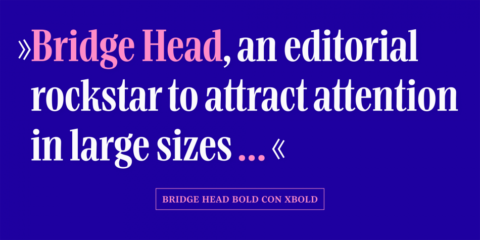 Bridge Head